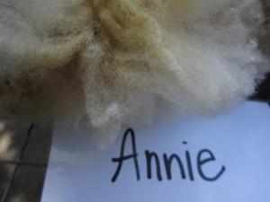 Annie-crimp