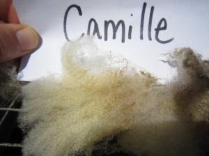 Camille-crimp