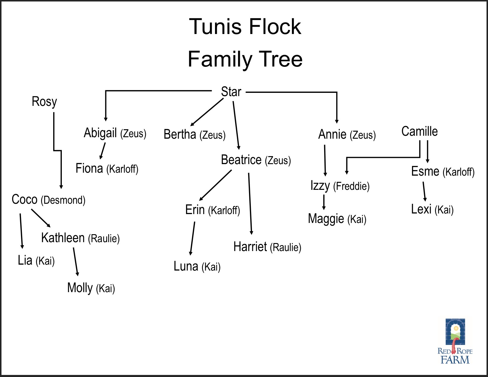 Tunis Flock Family Tree